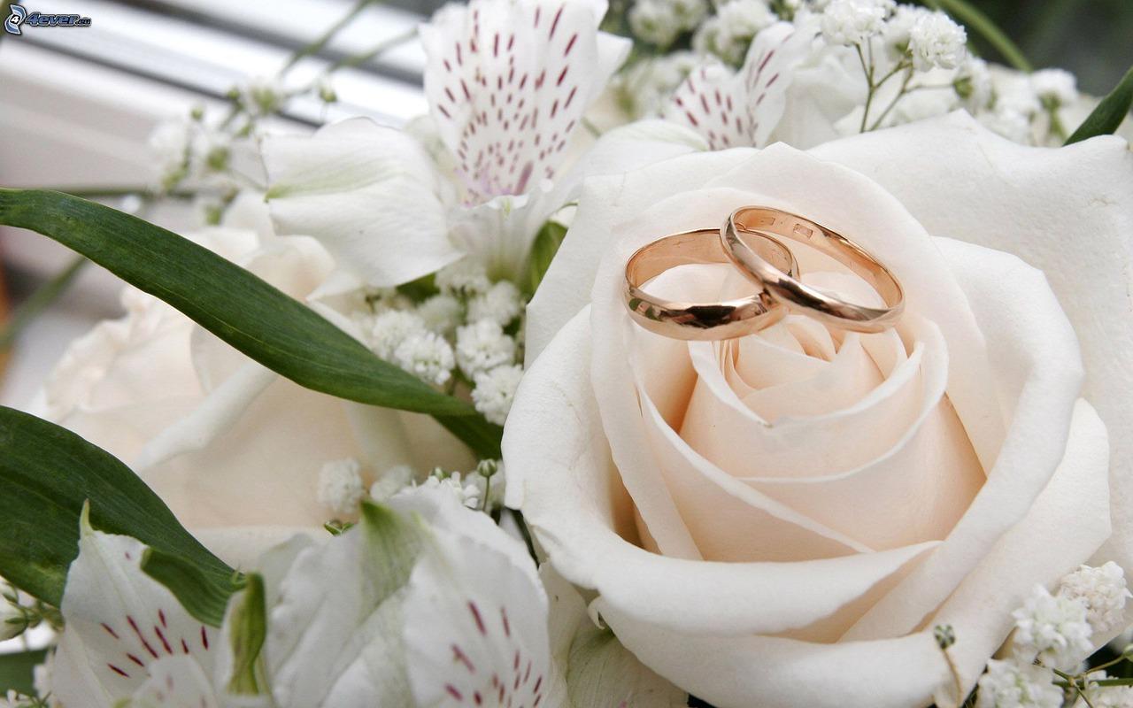Dasar Pernikahan dalam Islam