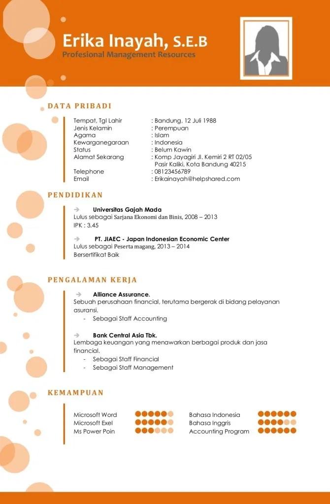 Gambar Contoh CV Lamaran Kerja