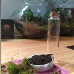 Siapkan Bahan ( Cara Membuat Aquascape )