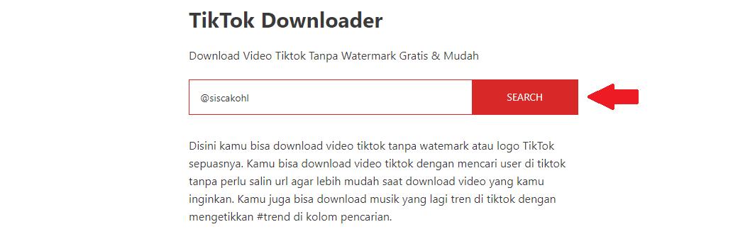 Menggunakan TikTok Downloader by Teknolagi 2